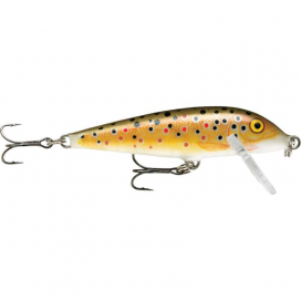 Wobler Rapala Count Down Sinking 07 TR